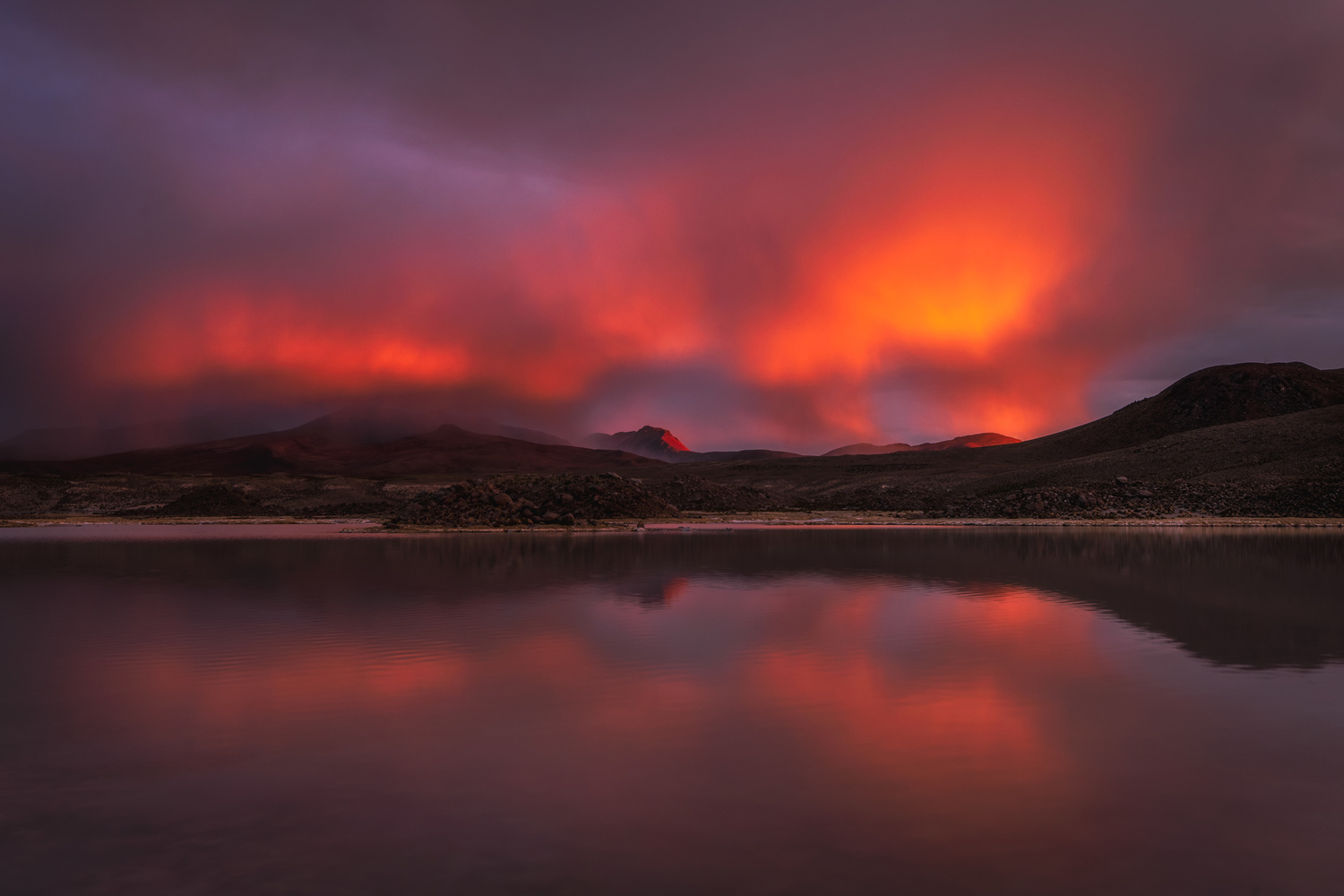 Red rain by Andres Puiggros