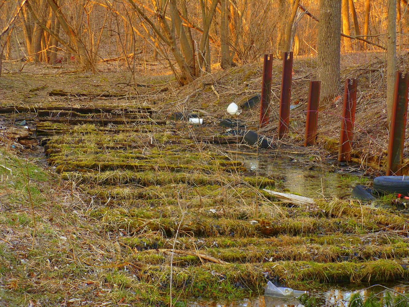 Old Trail by Linda Whitworth