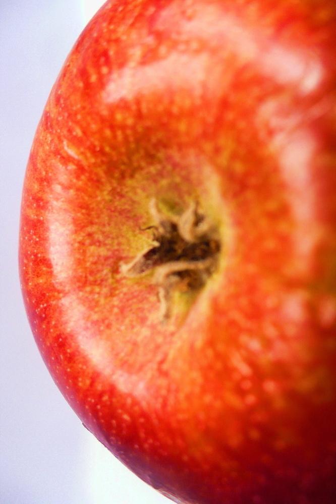 Apple by Linda Whitworth