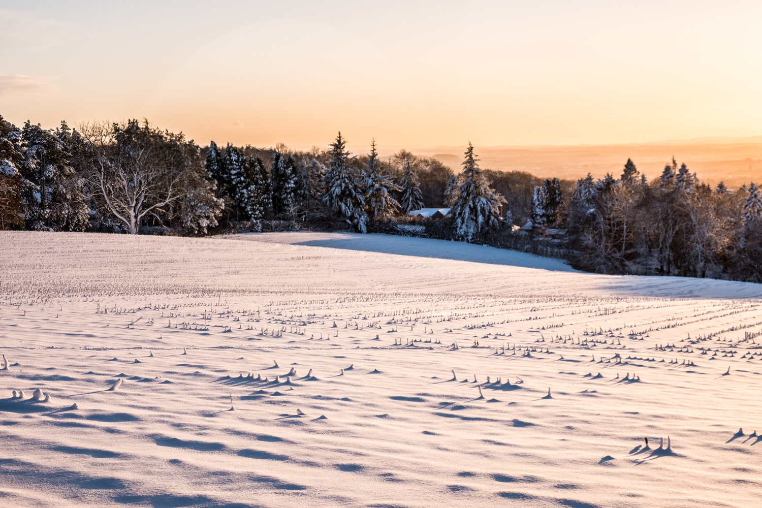 Snowy Landscape by andrew audley