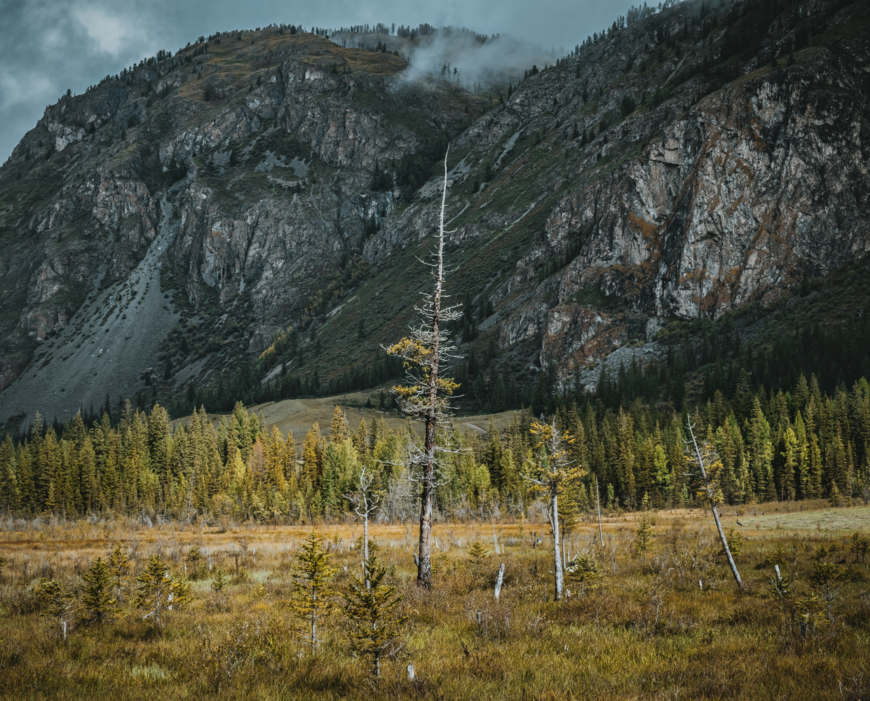 Altai by andrew audley