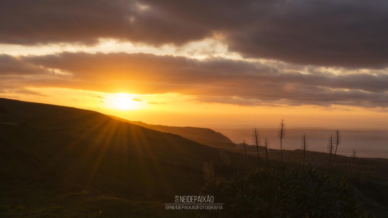 Sunset Silhouette by Neide Paixão