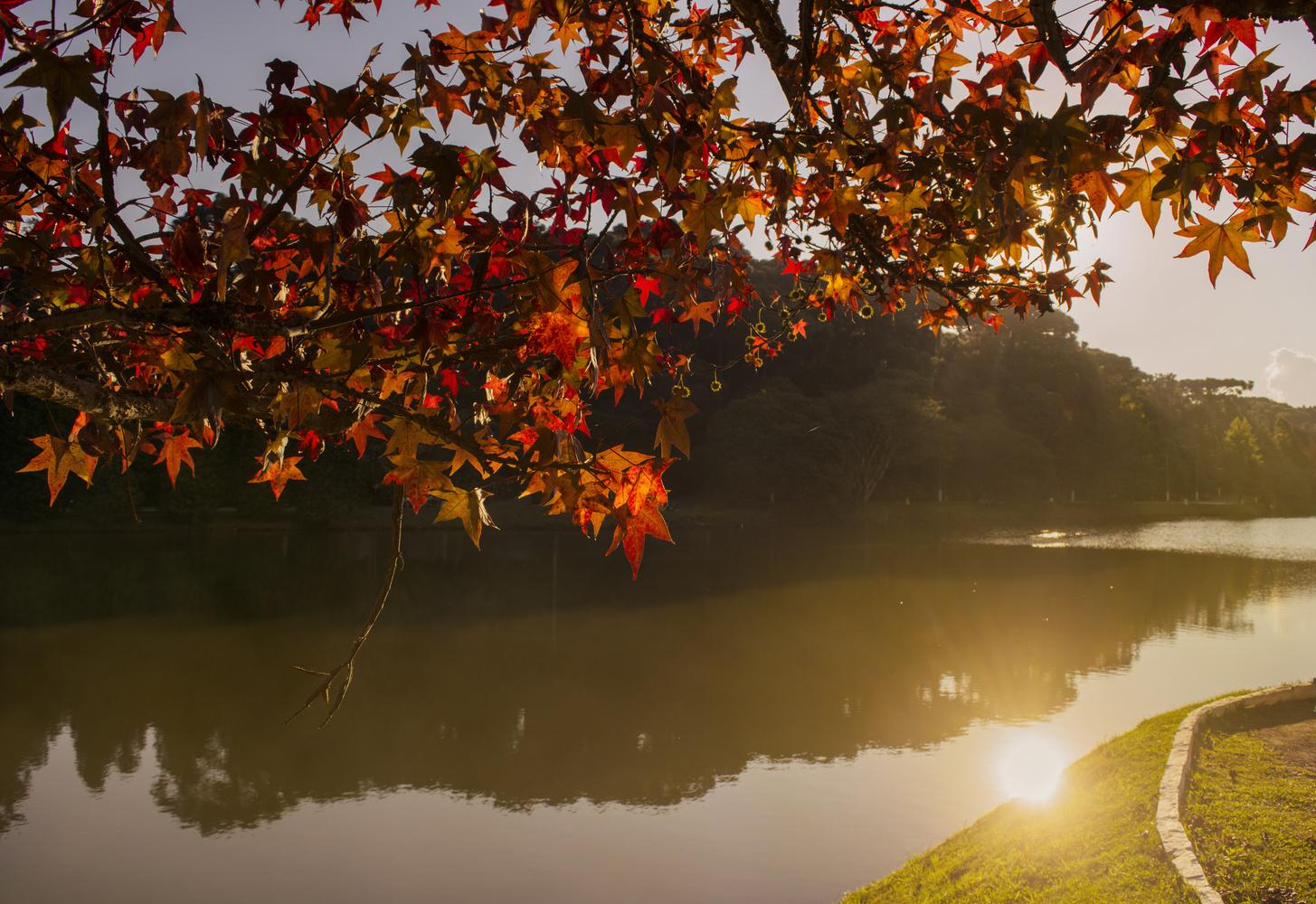São Bernardo Lake by Guilherme Ketzer