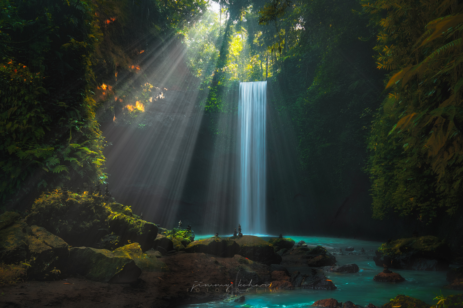 Ray of Tibumana by Jimmy Kohar