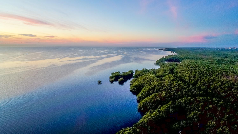 Biscayne Bay by Patrick S