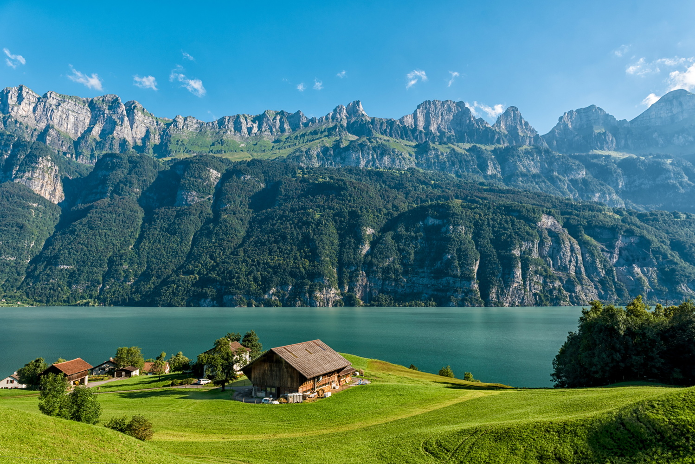 Swiss by Nir Roitman