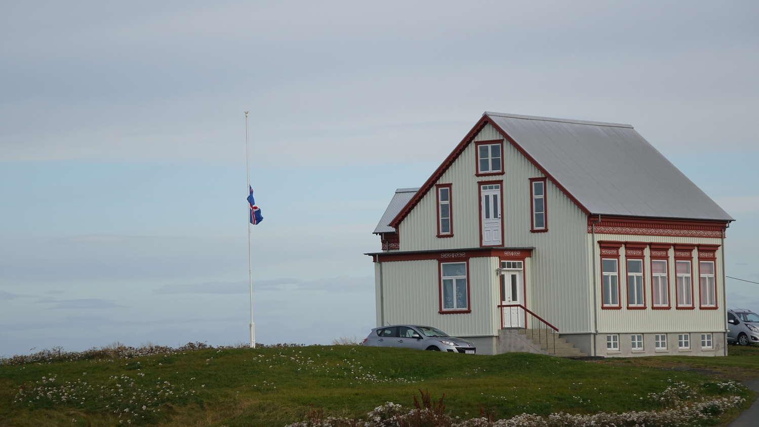 Iceland Greenery by David Wardrick