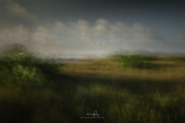Untitled 3 by Adrian Hernandez Binz