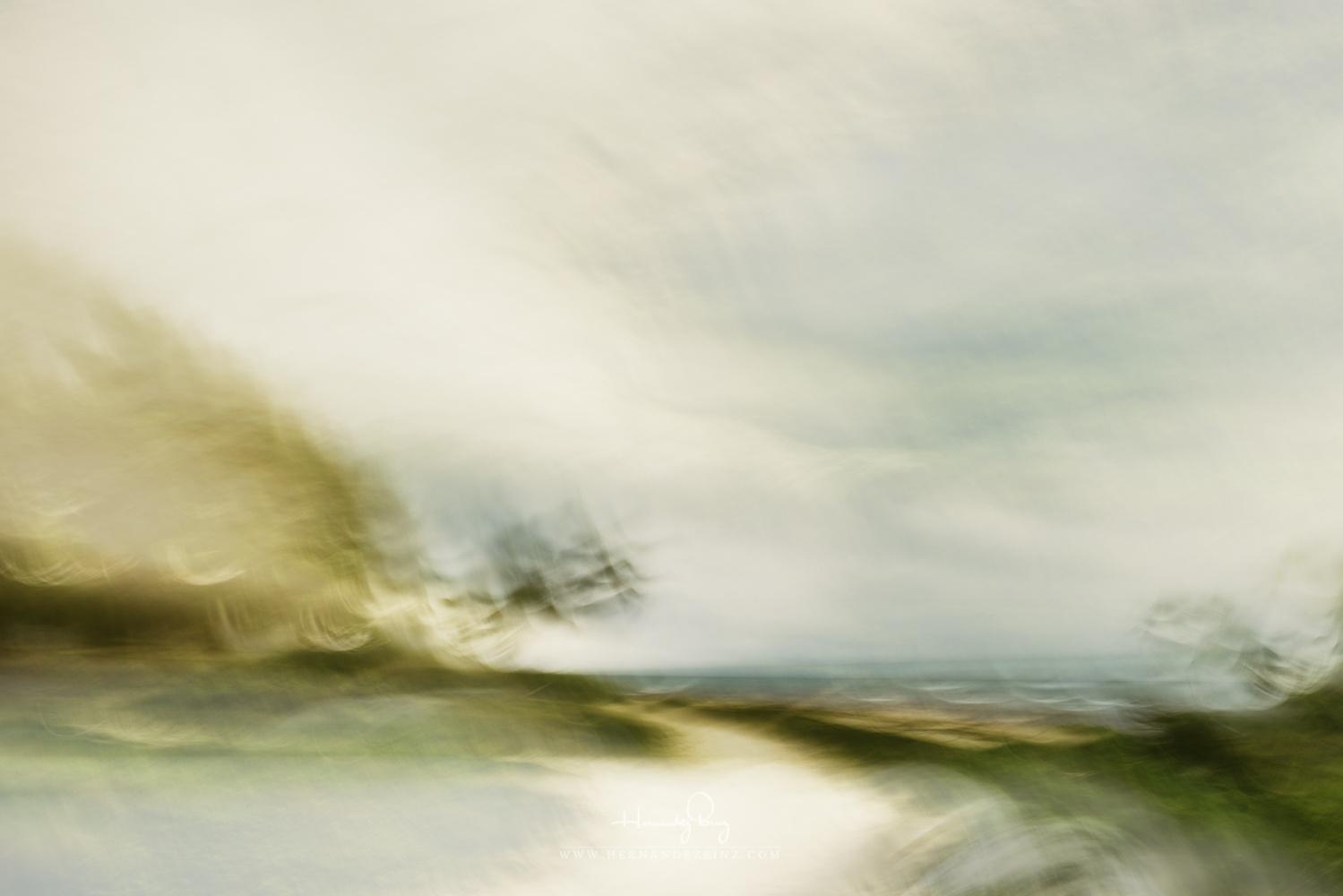 The Way to Zen by Adrian Hernandez Binz
