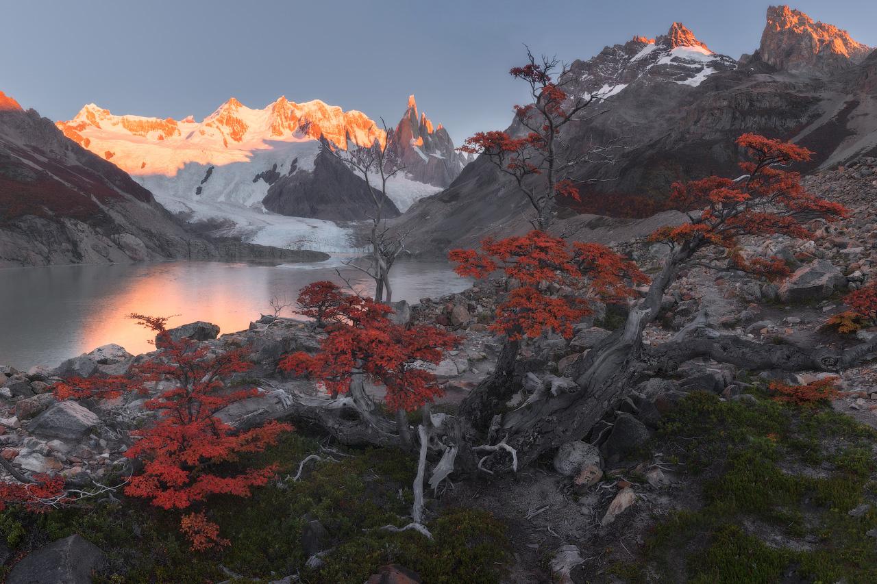 Fall in the Wild by Iurie Belegurschi