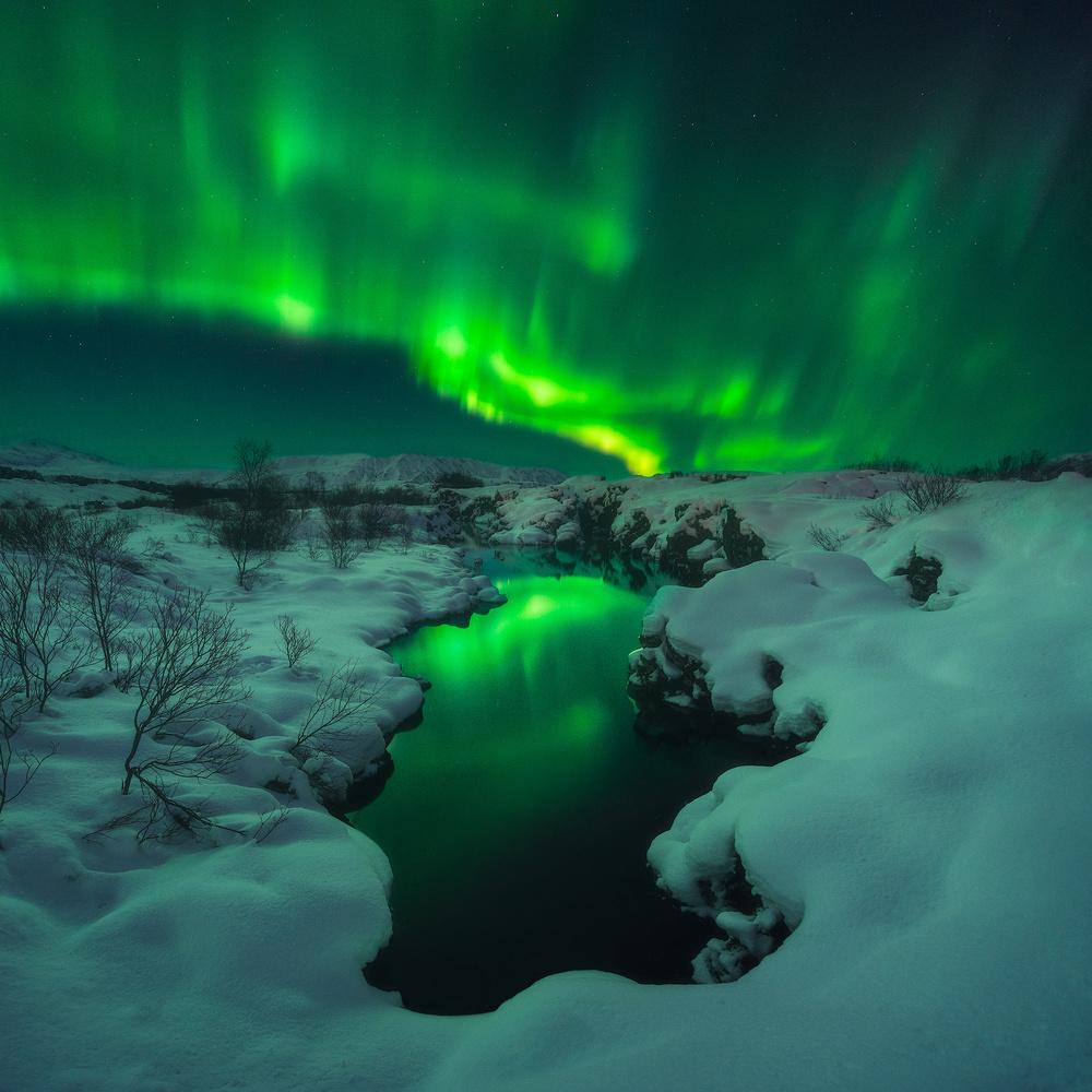 Northern Lights in Iceland by Iurie Belegurschi