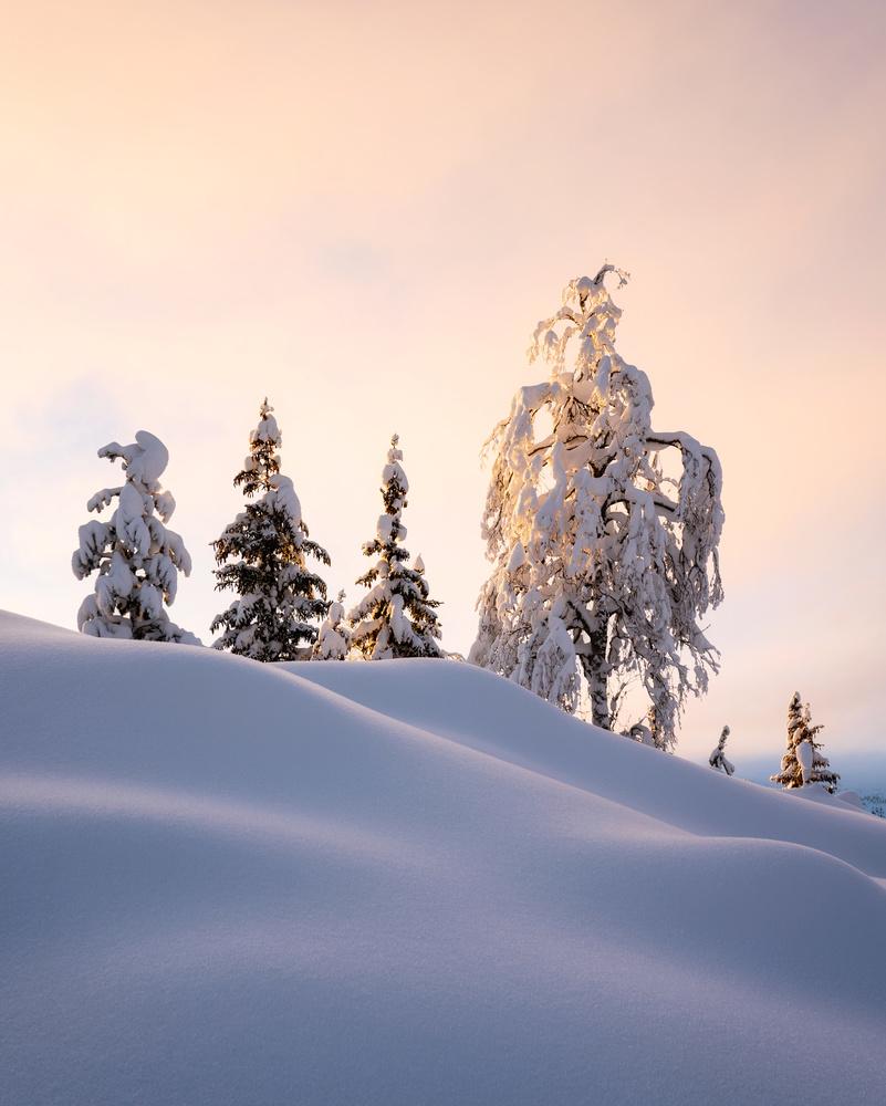 Winterwonderland by Klaus Axelsen