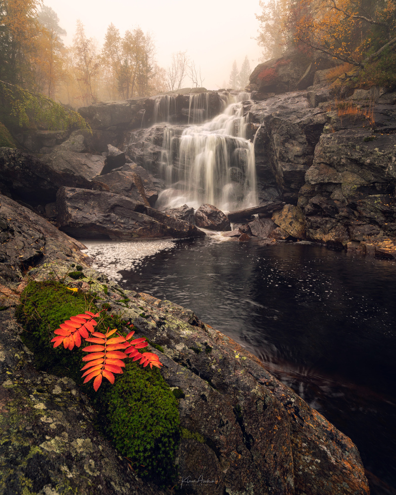 Foggy autumn morning by Klaus Axelsen
