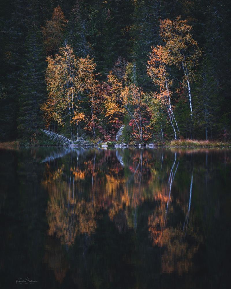 Last autumn colors by Klaus Axelsen