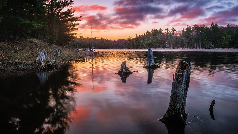 Predawn at Dennies Lake by Michael Higgins