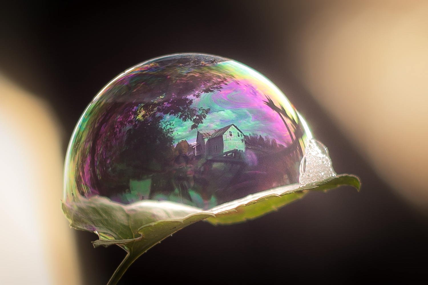 The Housing Bubble by Michael Higgins