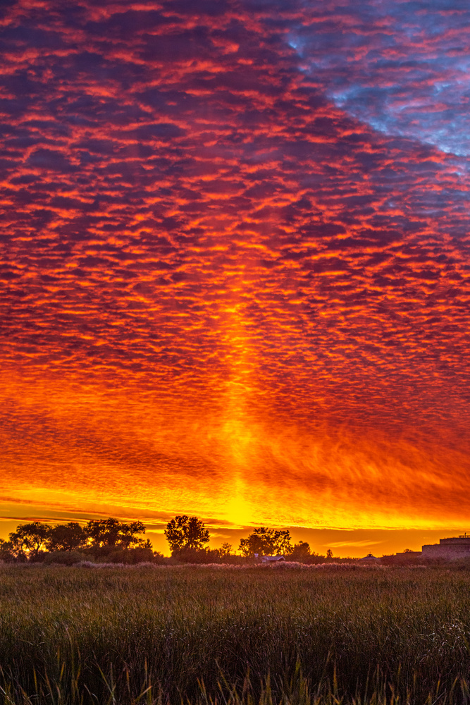 Manitoba Sunset by David Pavlich