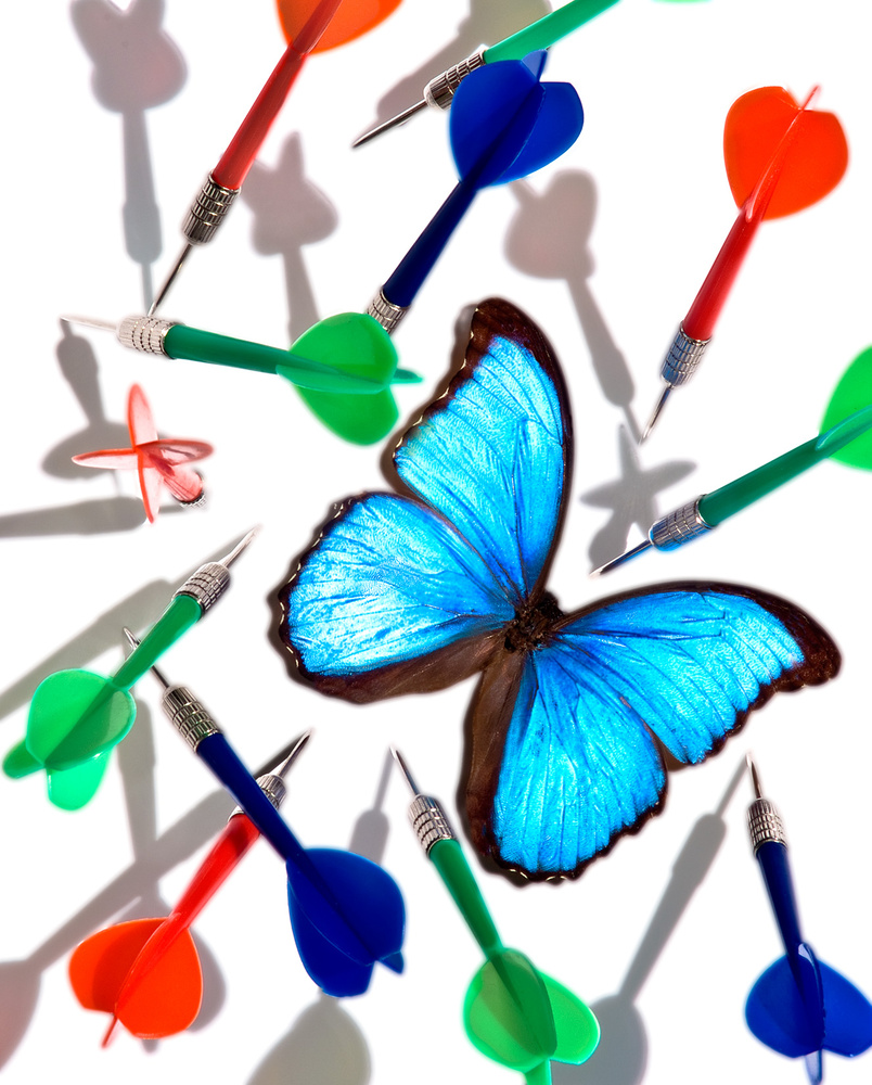 Butterfly and Darts by Robert Fishman