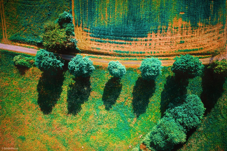 Rusty Landscape by Stefan Ernst