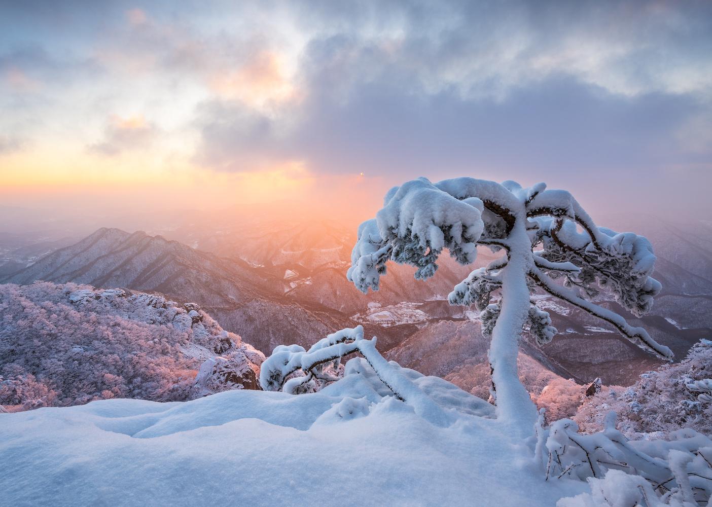 Frozen ghost by jaeyoun Ryu
