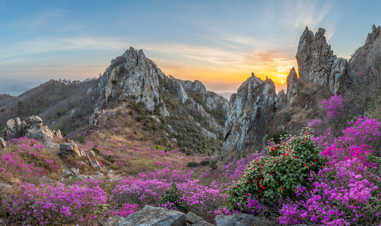 Blooming Time, Deokryongsan by jaeyoun Ryu