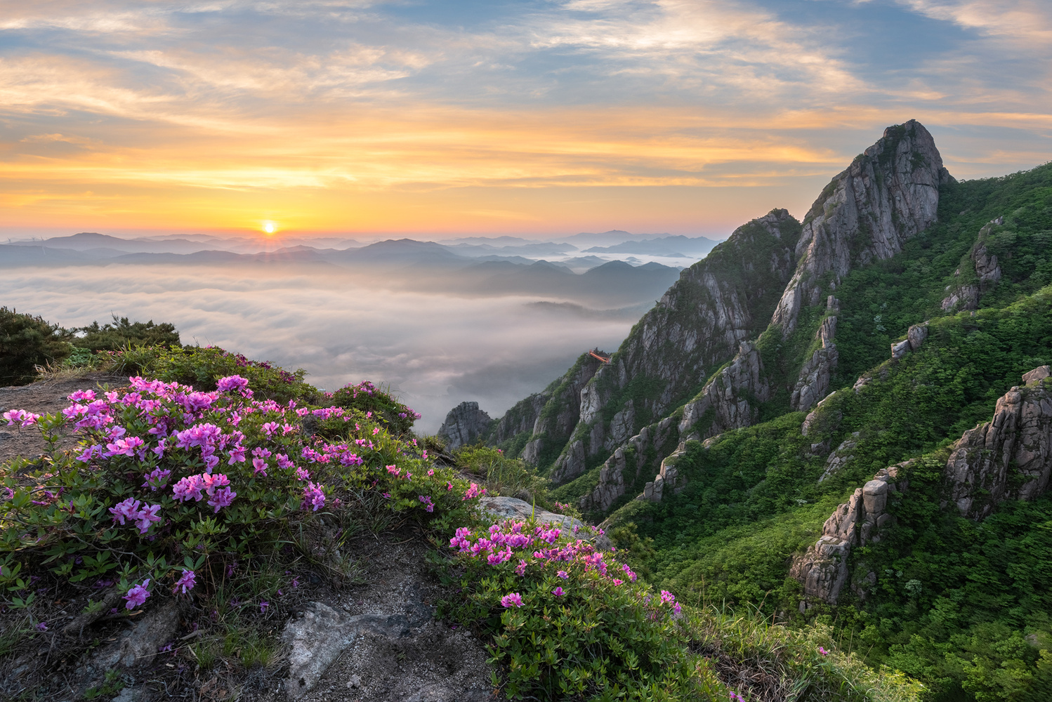 Spring in the valley of Wolchulsan by jaeyoun Ryu
