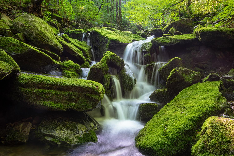 Green waterfalls by jaeyoun Ryu