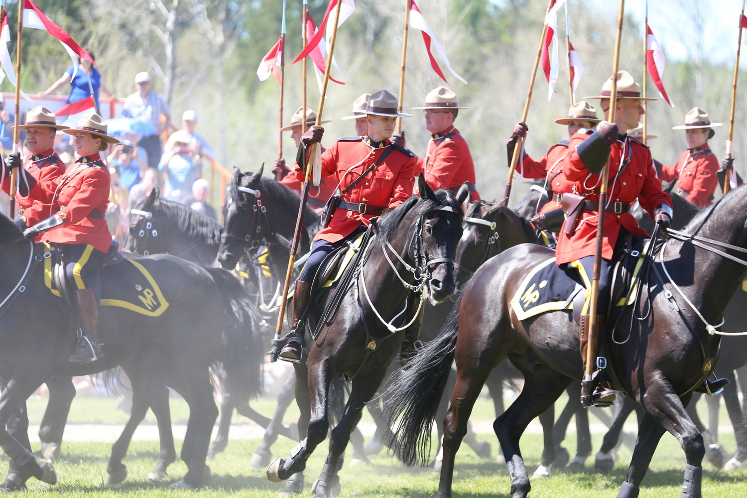 RCMP Musical Ride by Jess McShane
