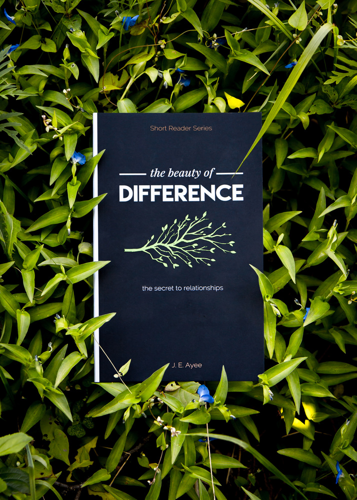 The Beauty of Difference   by Jerome Brill