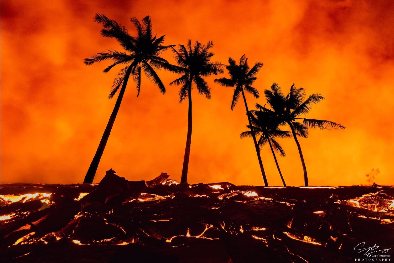 Lava Paradies by Cody Yamaguchi