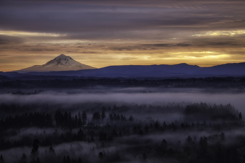 Thru The Fog by Nick Binkley