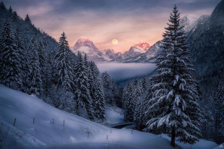 Winter's Melody by Daniel Eichleitner