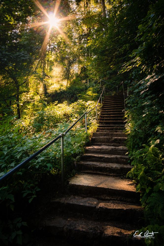 Stairway to Heaven  by Erik Strot