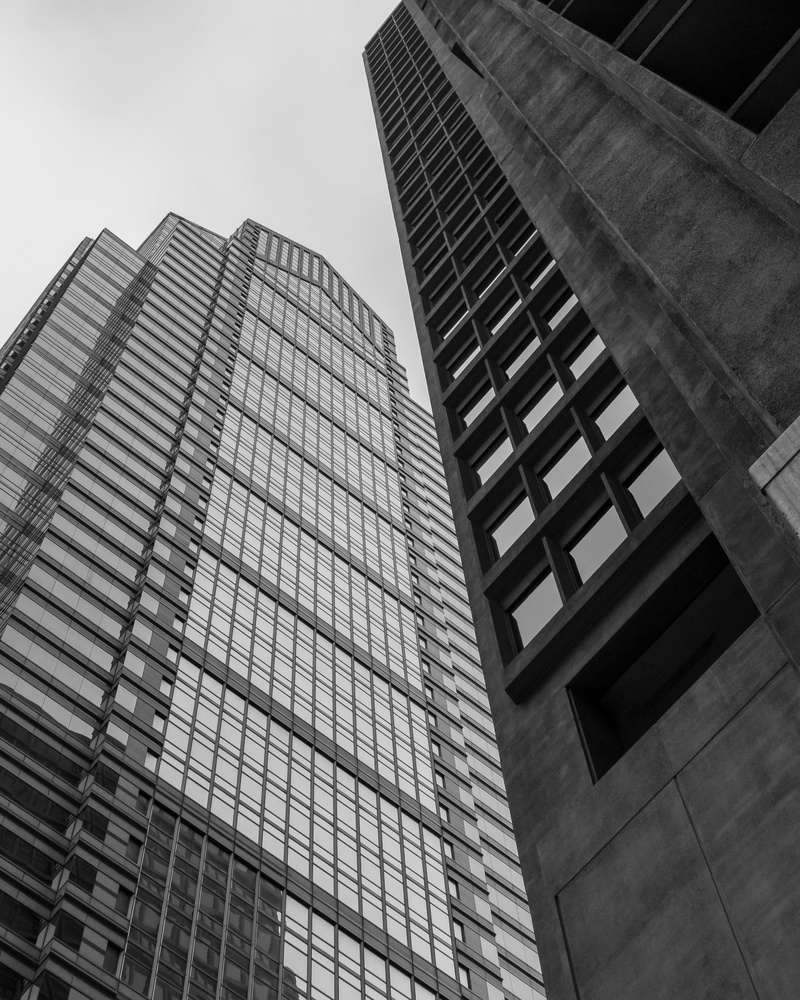 Looking Up by Christopher McGillicuddy