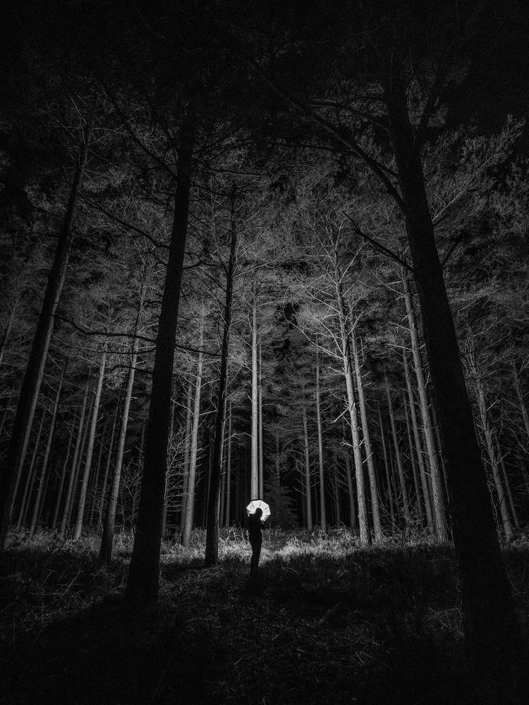 Good night in the Surrey Hills by Tomasz Kowalski