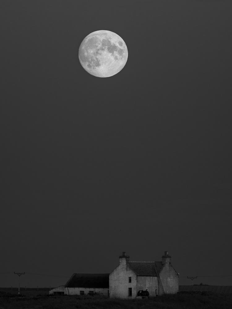 Full moon by tomas doe