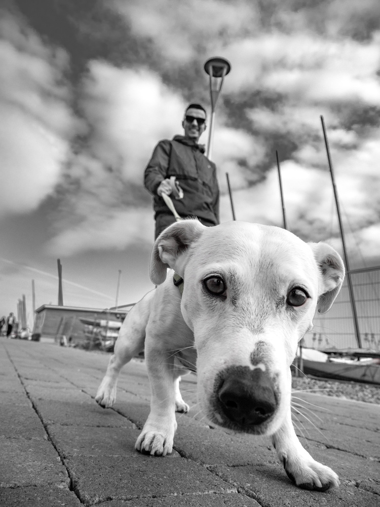 Street photography by Tomasz Kowalski