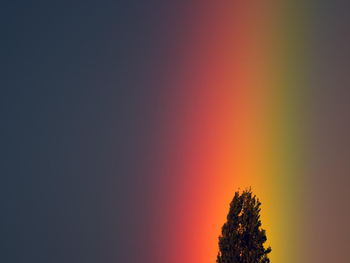 Rainbow by tomas doe