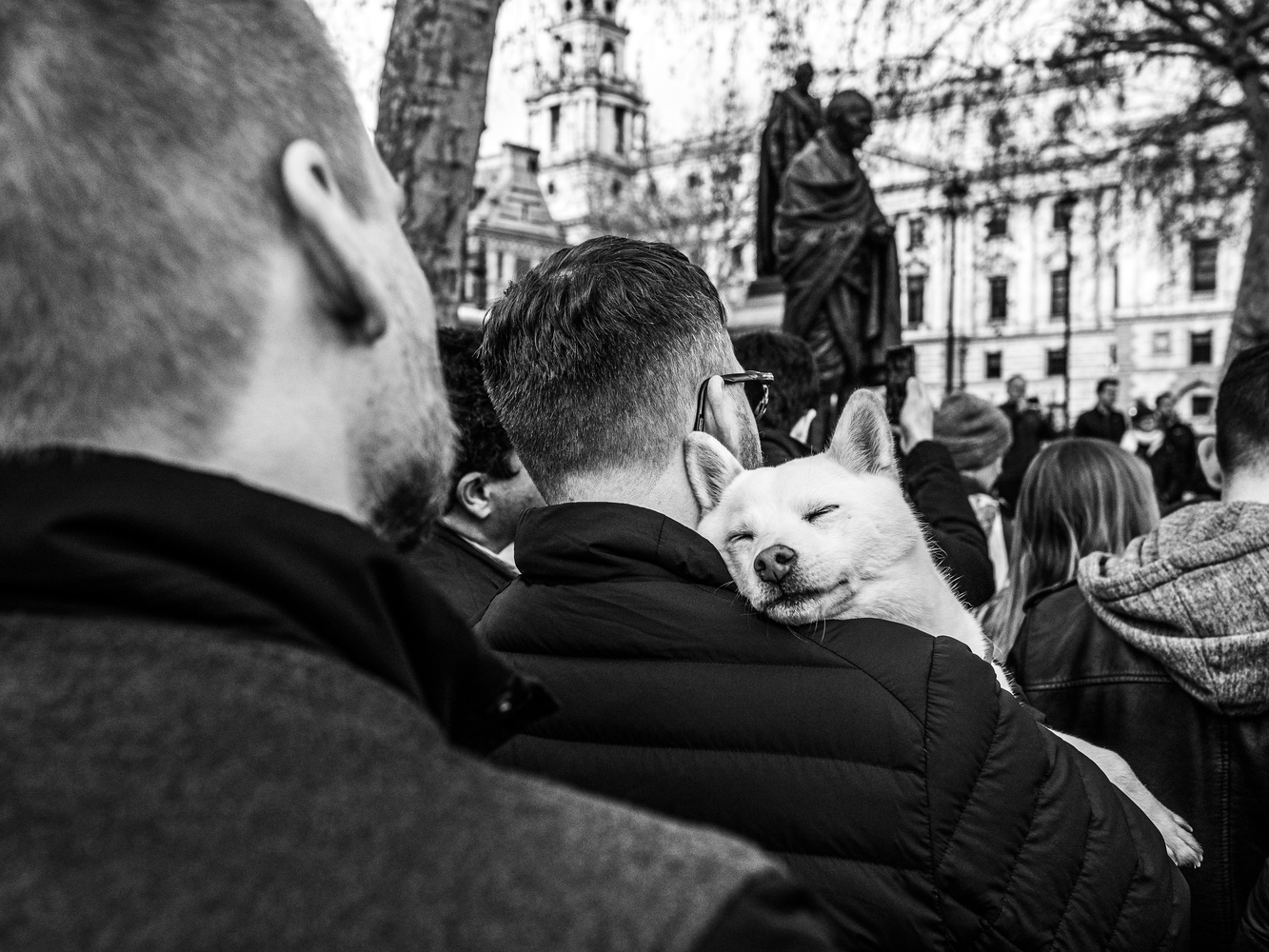In the crowd by Tomasz Kowalski