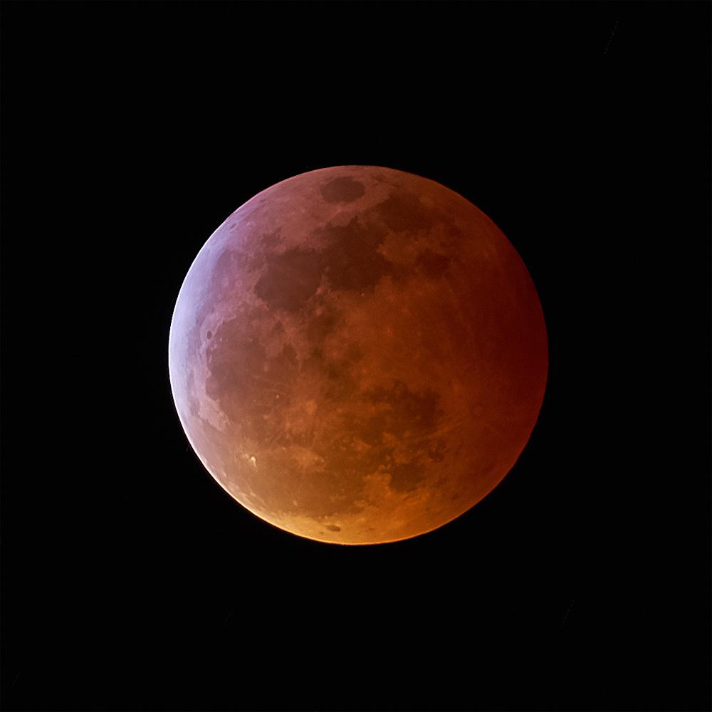 2019 Blood Moon Eclipse by Rus Kulinov