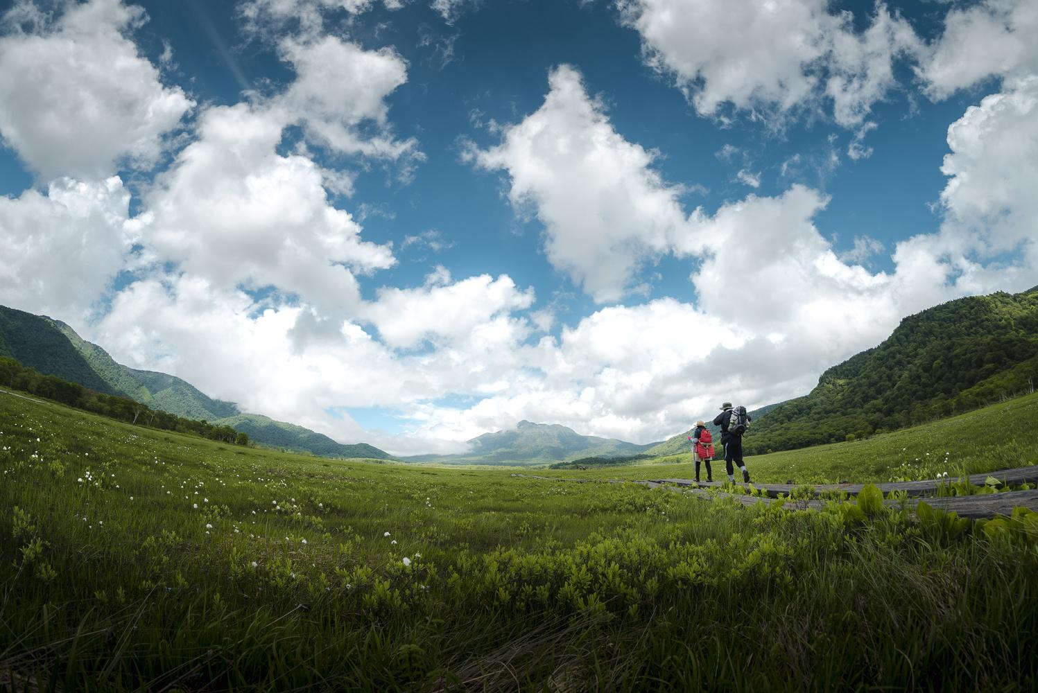 Faraway Land by Yuandong Li