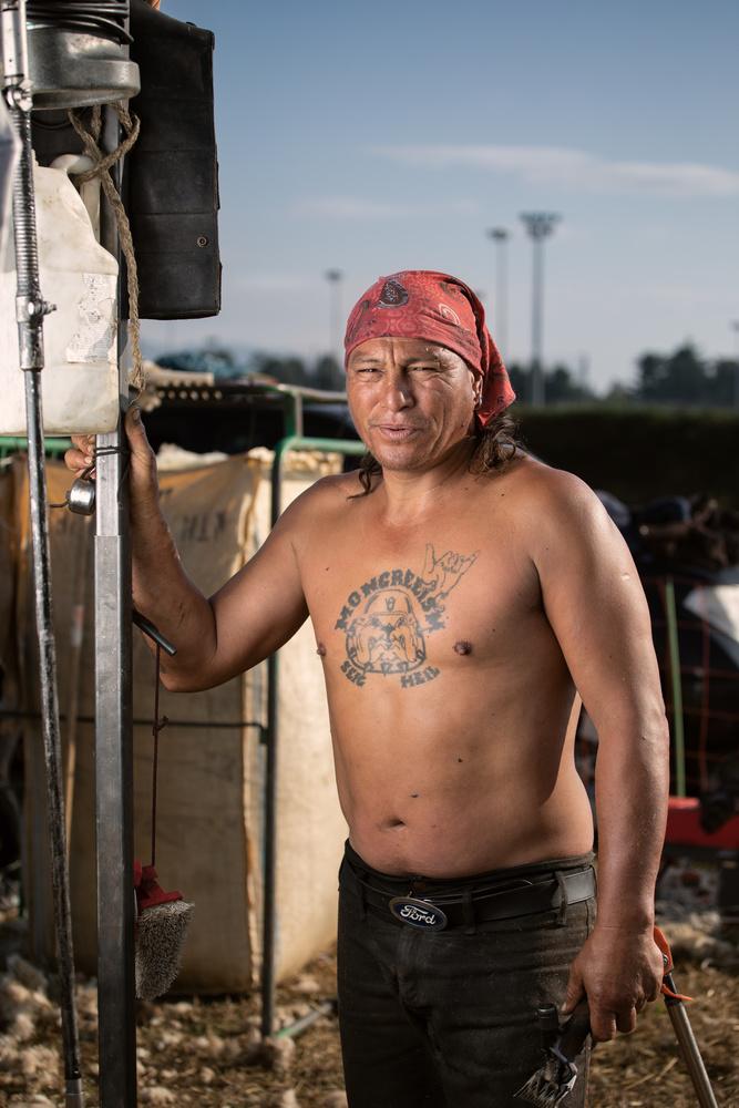 The Maori shearer by Mauro Scattolini