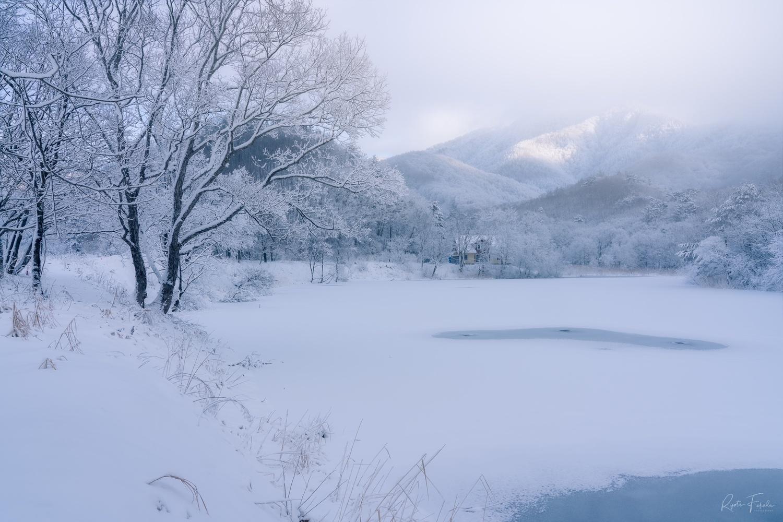 Winter by Ryota Fukuda