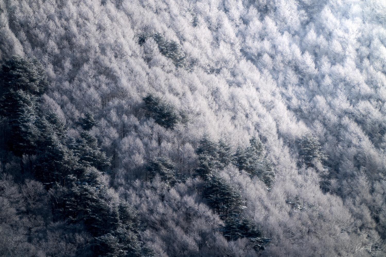 Frozen day by Ryota Fukuda