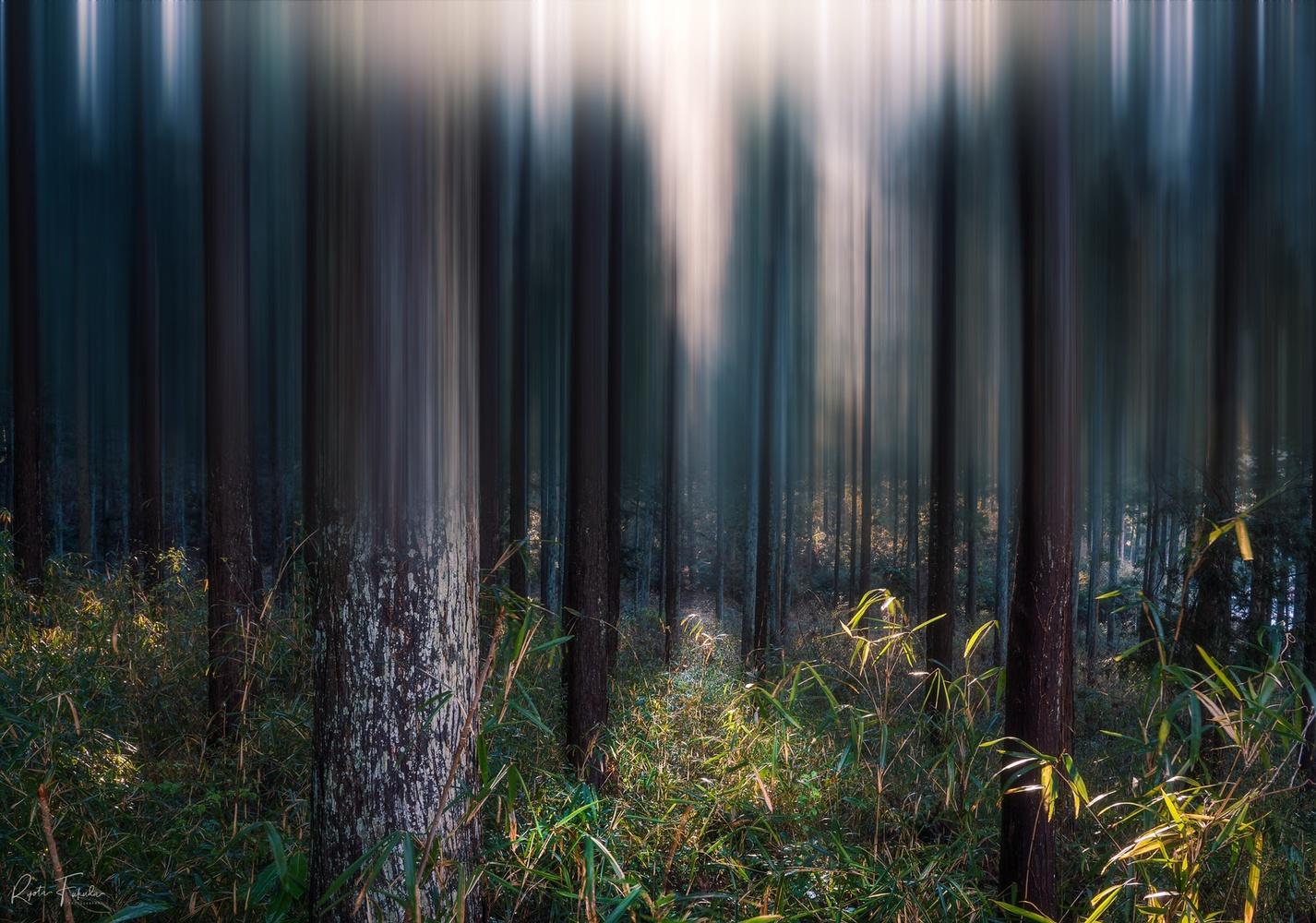 Lighting by Ryota Fukuda