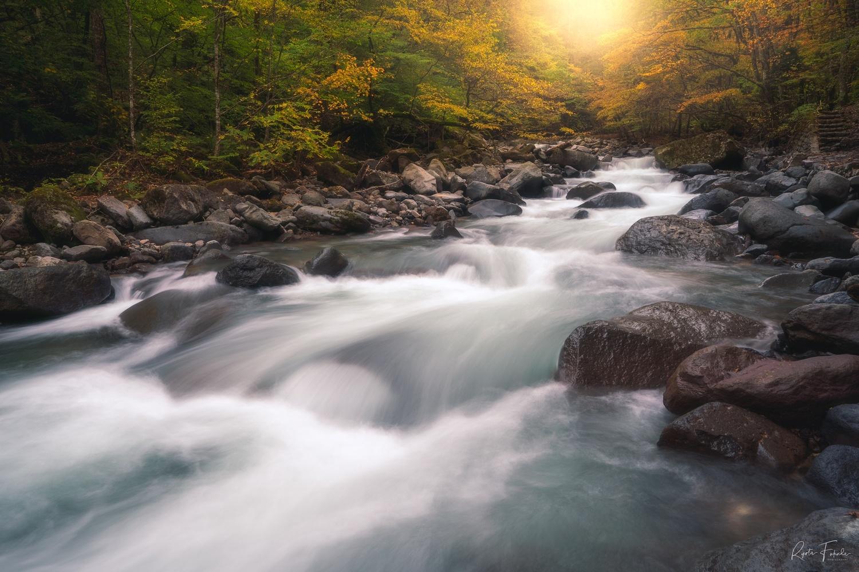Stream of water by Ryota Fukuda