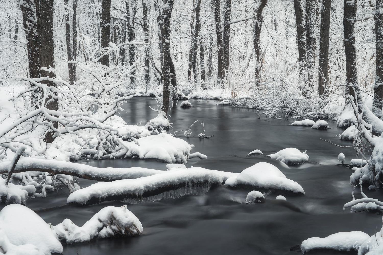 White river by Ryota Fukuda