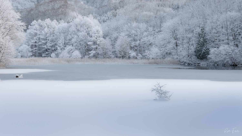 Snow land by Ryota Fukuda