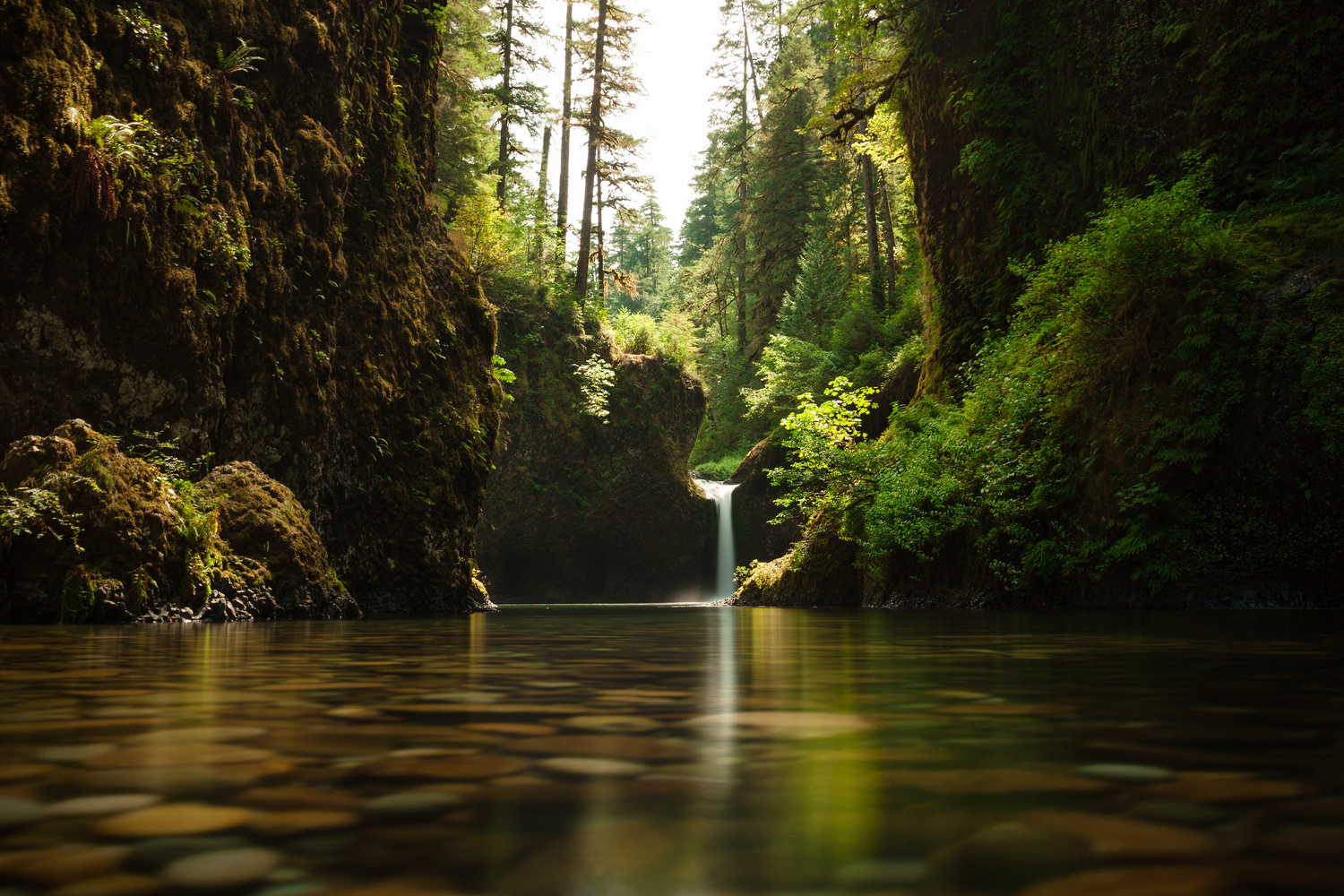 Punchbowl Falls - Before the Fire by Richard Rhee