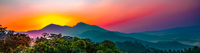 Plantation Sunrise by Arvind Vallabh
